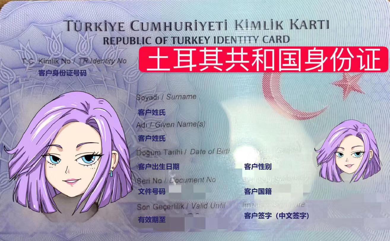 恭喜C小姐获得土耳其护照