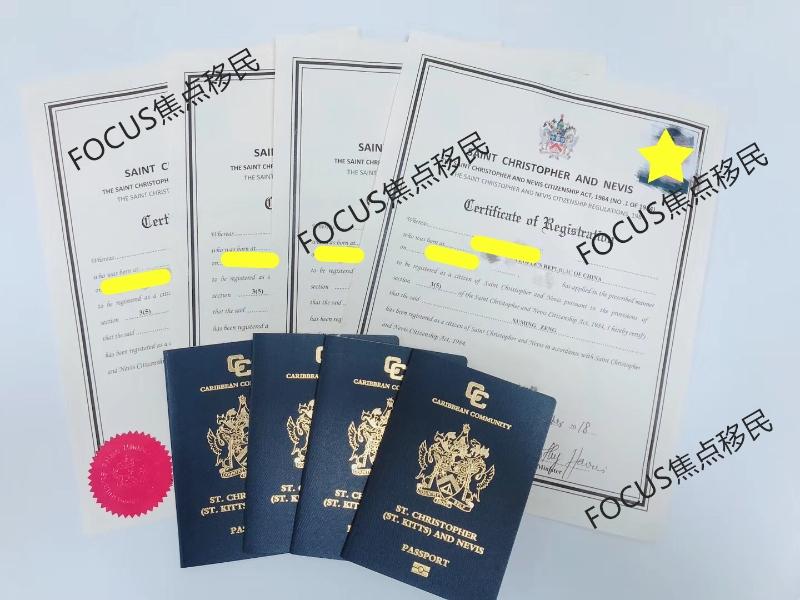 圣基茨护照10月份案例