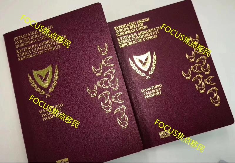 恭喜N先生团队成功获塞浦路斯护照